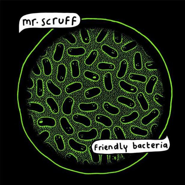 scruff bacteria