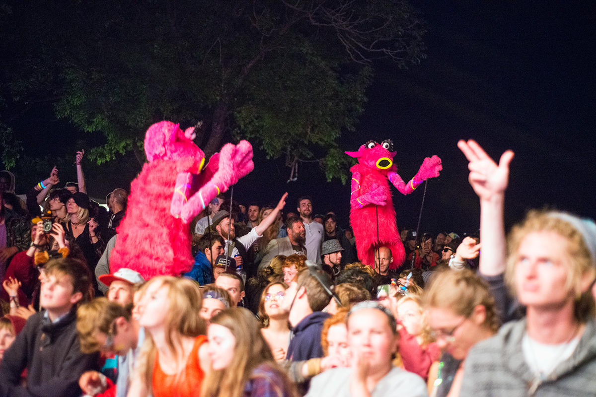 Snowths in the crowd for Dr Syntax and Pete Cannon performing on the Garden stage at Nozstock 2015