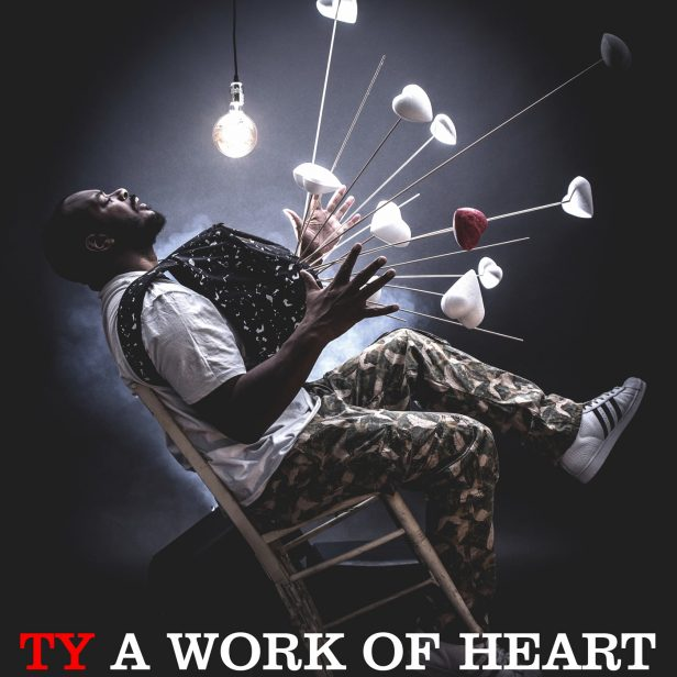 ty-a-work-of-heart